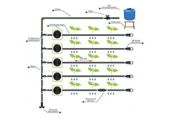 Система капельного полива без автоматики Синьор Помидор в Коврове по выгодным ценам от производителя